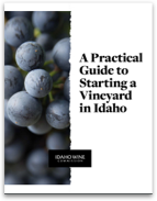 A Practical Guide to Starting a Vineyard in Idaho